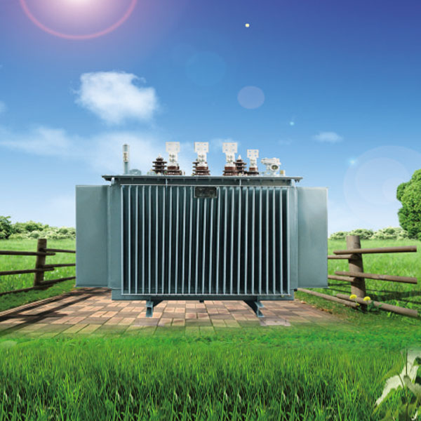 Amorphous alloy oil immersed transformer